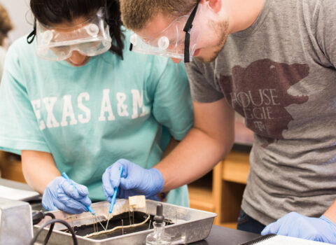 Two biology students wear safety goggles and examine a worm in a metal tray