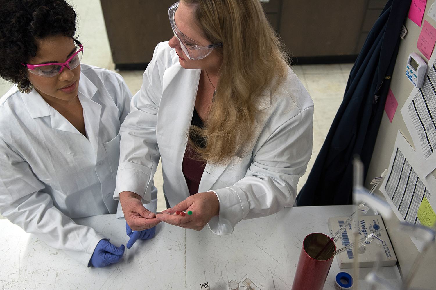Chemist Kim Dunbar and a graduate student examine slides in a lab